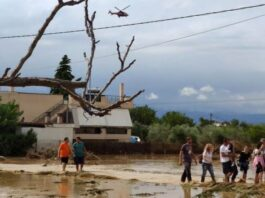 Five killed after Evia island storms in Greece